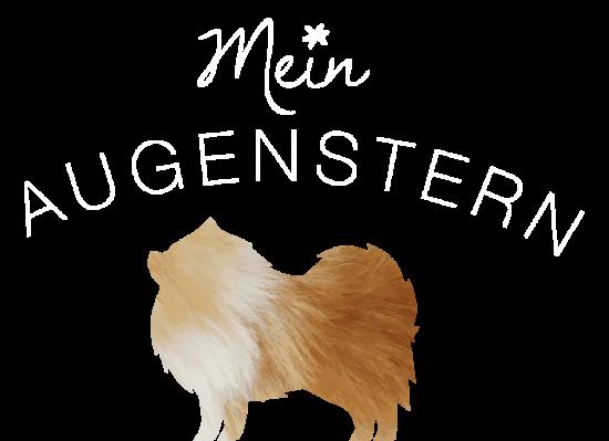 Spitze MeinAugensternh_Logo_